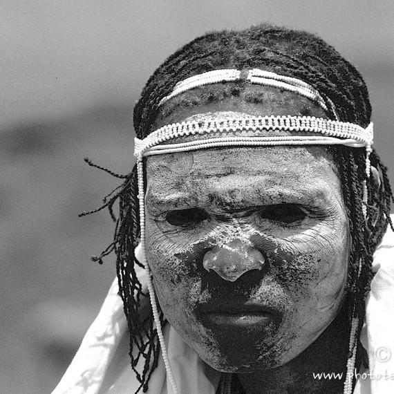 www.phototeam-nature.com-antognelli-afrique du sud