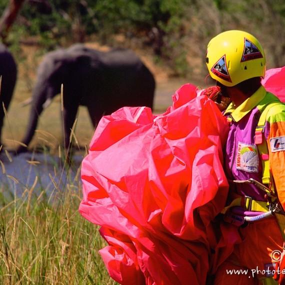 www.phototeam-nature.com-antognelli-botswana-parapente-elephant