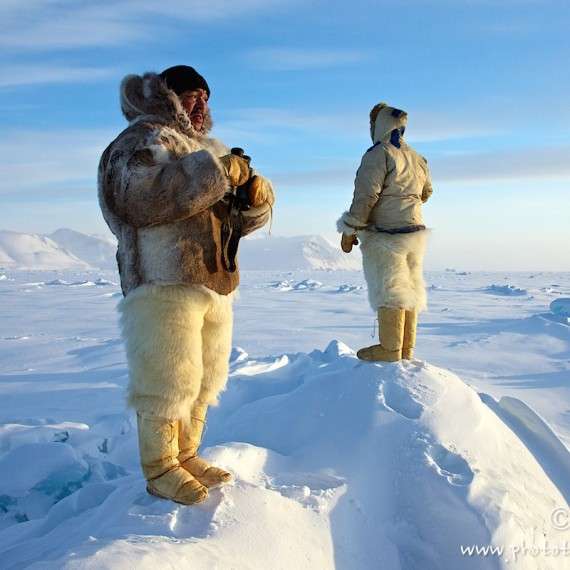 www.phototeam-nature.com-antognelli-groenland-greenland-nanoq-polar bear-ours polaire-hunting-chasse-traineau-chien-dog sleg-savissivik-l âme de la banquise