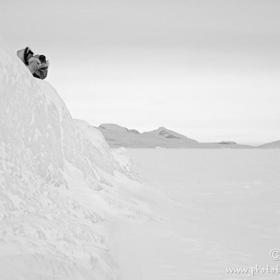 www.phototeam-nature.com-antognelli-groenland-greenland-nanoq-polar bear-ours polaire-hunting-chasse-traineau-chien-dog sleg-savissivik