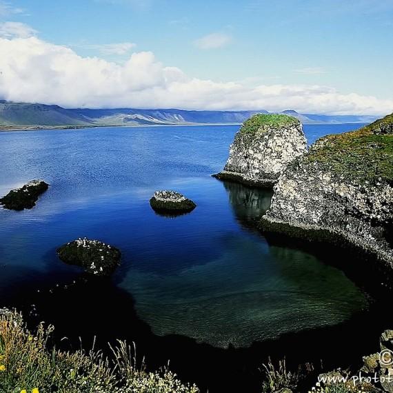 www.phototeam-nature.com-antognelli-feroe
