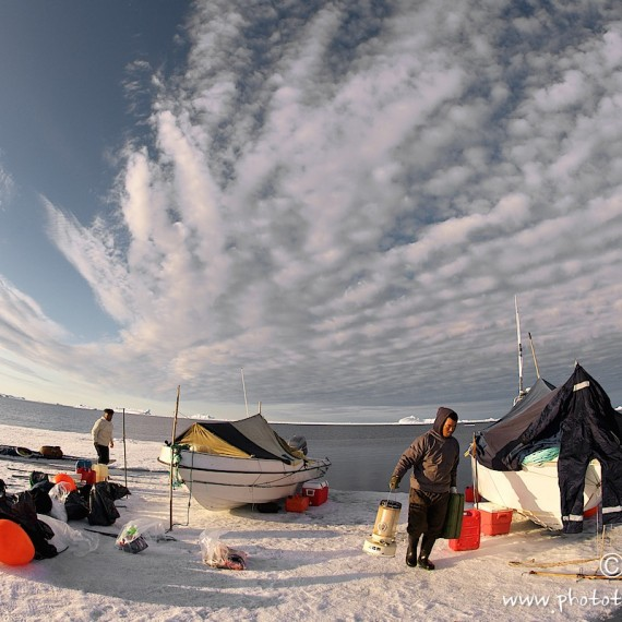 www.phototeam-nature.com-antognelli-groenland-greenland-narwhal-narval-chasse-hunting-kayak-camp