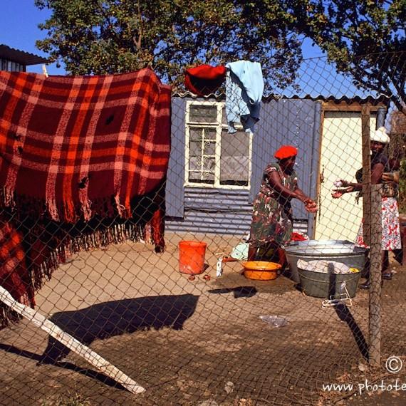 www.phototeam-nature.com-antognelli-afrique du sud-soweto