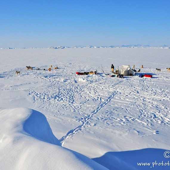 www.phototeam-nature.com-antognelli-Melville-expedition-traineau-sled-groenland-greenland-camp