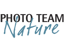 photo-team-nature-logo