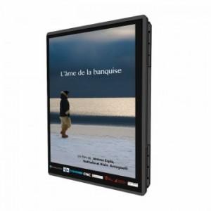 DVD L'âme de la banquise