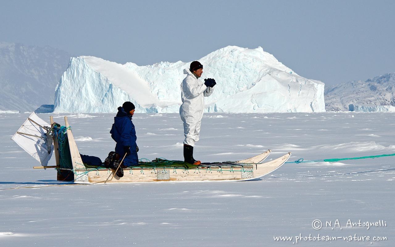 www.phototeam-nature.com-antognelli-greenland-nuussuaq-seal hunting