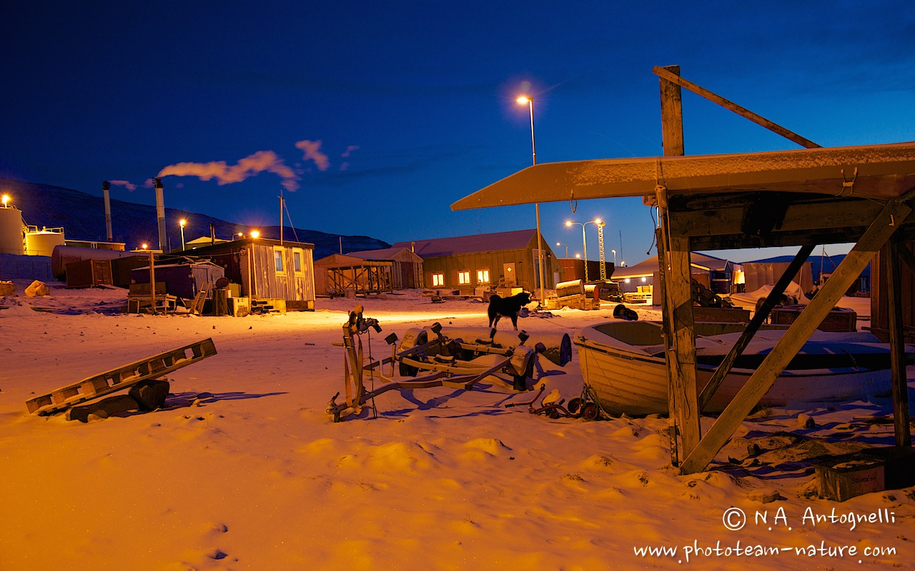 www.phototeam-nature.com-antognelli-greenland-qaanaaq-polar night