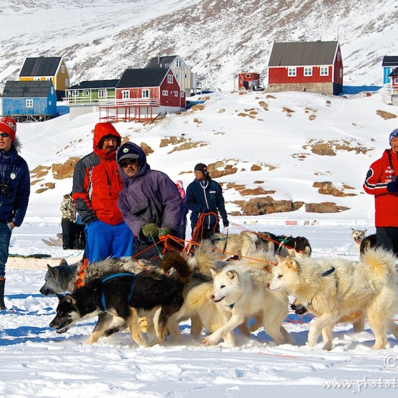 www.phototeam-nature.com-antognelli-greenland-nuussuaq-dos sled