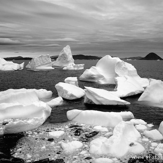 www.phototeam-nature.com-antognelli-greenland-iceberg
