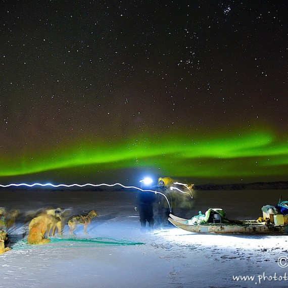 www.phototeam-nature.com-antognelli-greenland-dog sled-hunter-aurores boreales