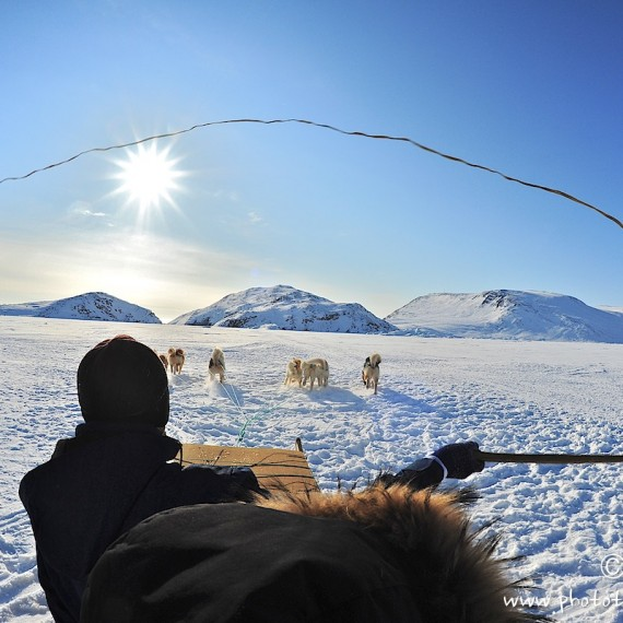www.phototeam-nature.com-antognelli-greenland-nuussuaq-ice floe-dog sled-hunter